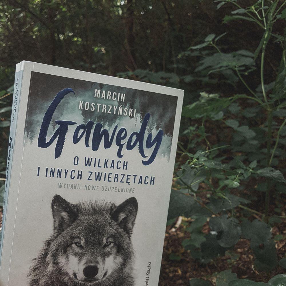 """Marcin Kostrzyński """"Gawędy o wilkach i innych zwierzętach"""" Wydawnictwo Świat Książki - okładka książki"""
